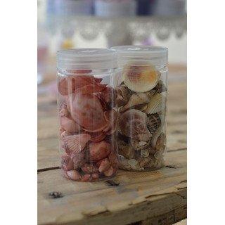 Coquillages assortiment à parsemer (boite 190g)