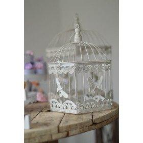 Cage oiseaux papillons Petit Modèle