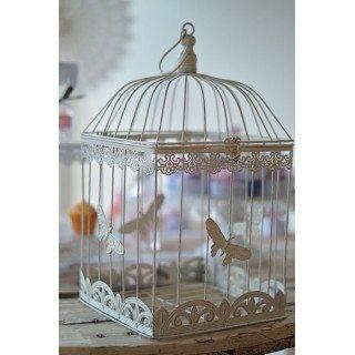 Cage oiseaux papillons Grand Modèle