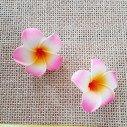 Fleur frangipanier rose bonbon