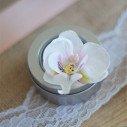 Fleuron d'orchidées blanc coeur rose clair