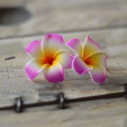 Fleur frangipanier artificielle fushia