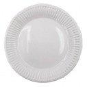 10 Assiettes blanches cartonnées