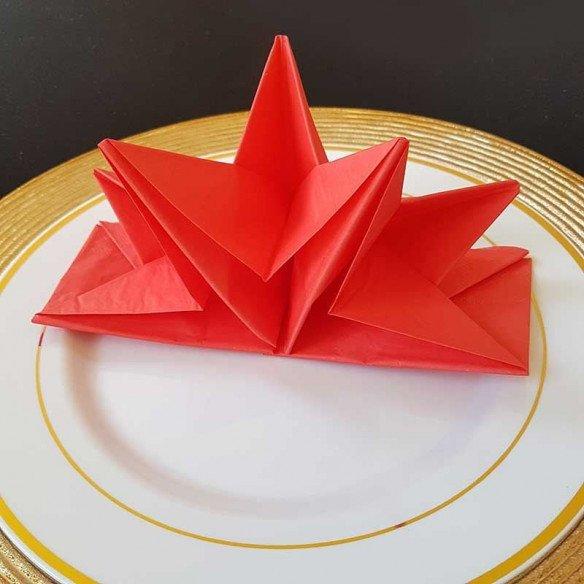 Serviettes papier pré-pliées rouges (boite de 12)