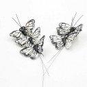 Papillon blanc sur tige X6