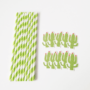10 pailles vertes à rayures cactus