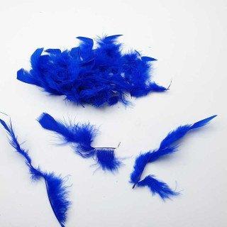 Plume bleu roi décoration (sachet de 20)