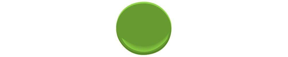 Décoration anniversaire vert